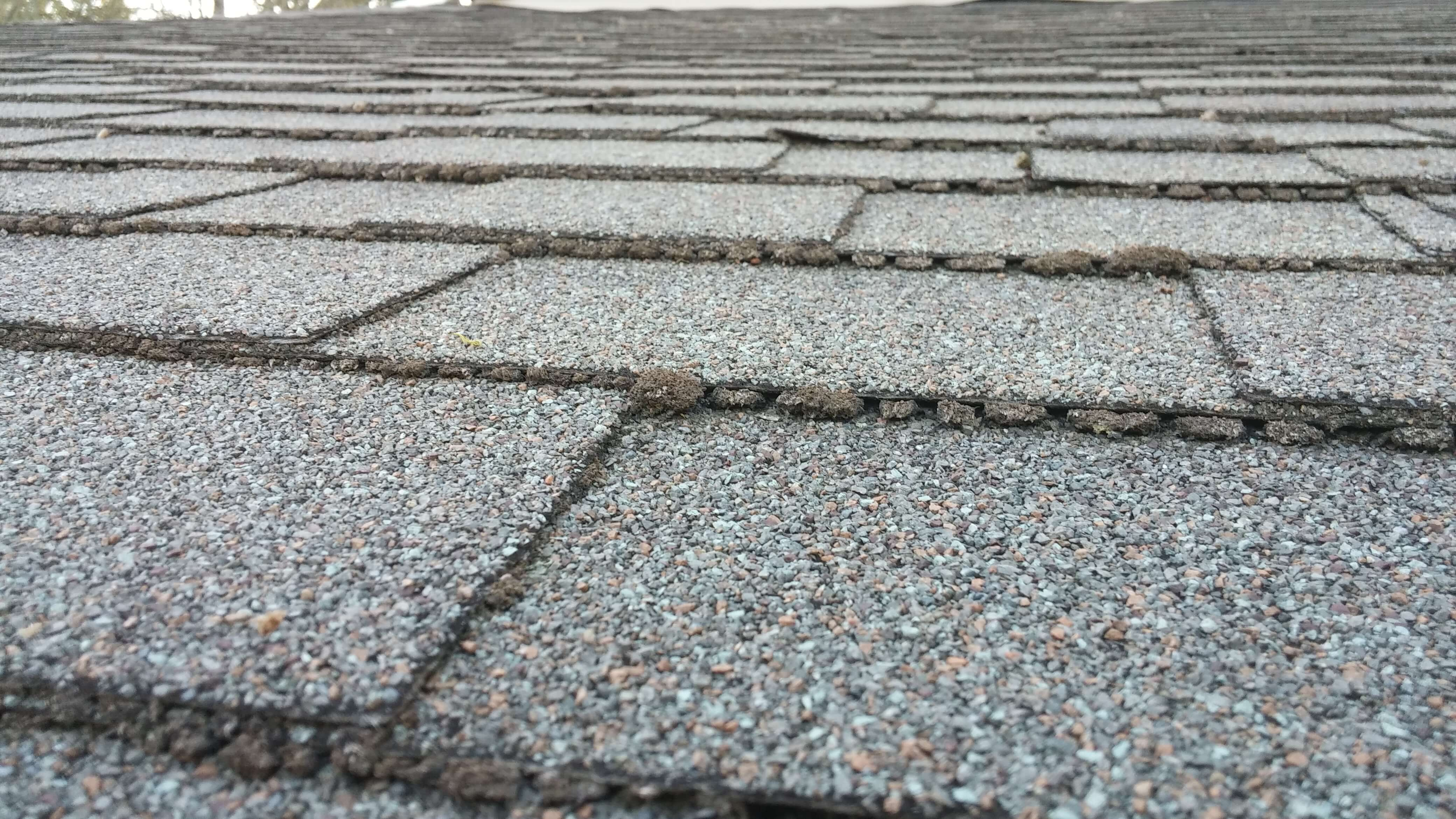 How to inspect your roof for damage in Mount Vernon, WA